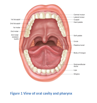 Pictures of Mouth and Tongue Disease - m Pictures of the mouth and throat